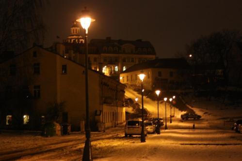 Snowy Vilnius
