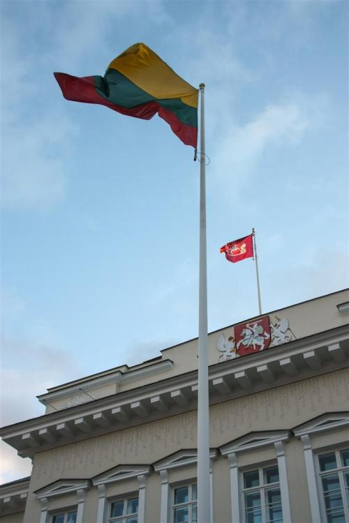 Flags at the Presidential Palace
