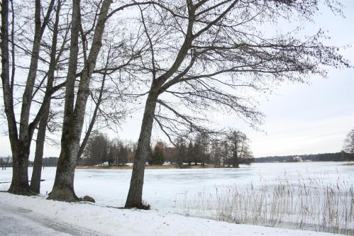 Frozen lake Bernardinai